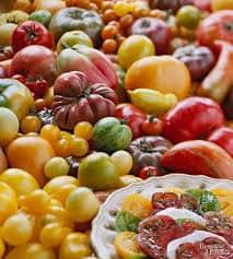 Variedades de tomates Vila Verde